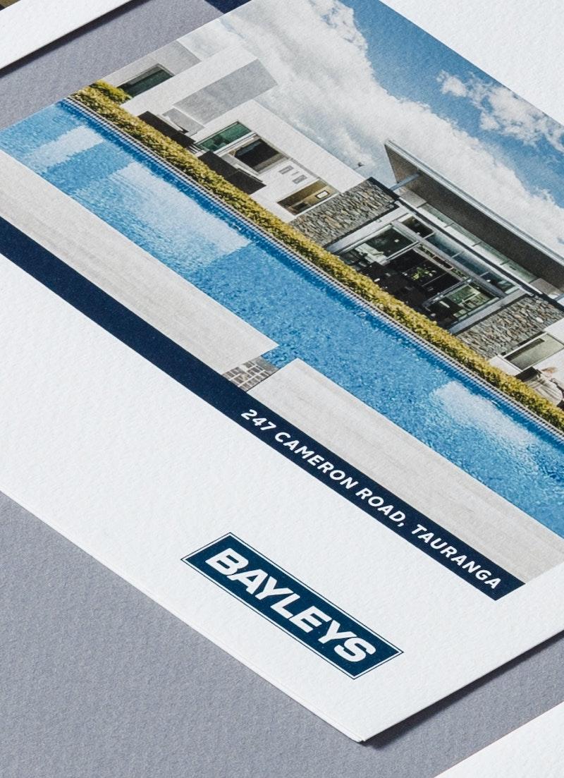 Fuman Cover Bayleys NS